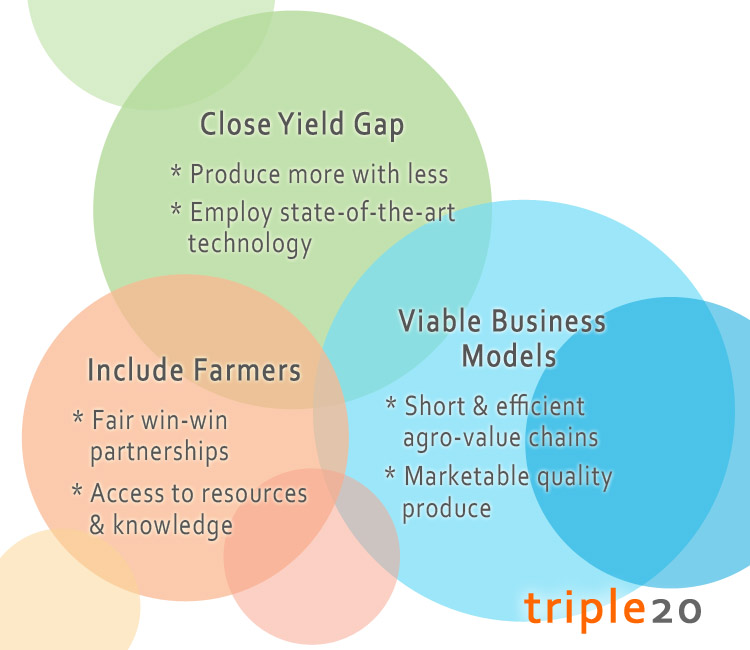 Triple20 Sustainability Triangle