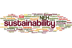 Word cloud about sustainability